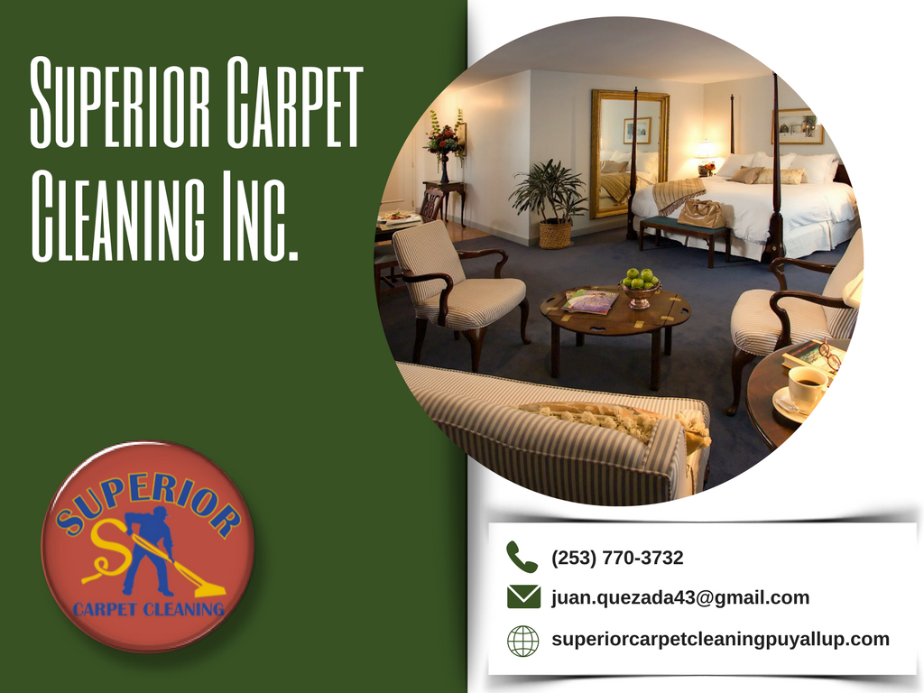 Organic Carpet Cleaning in Puyallup, WA Apartment Cleaning in ...