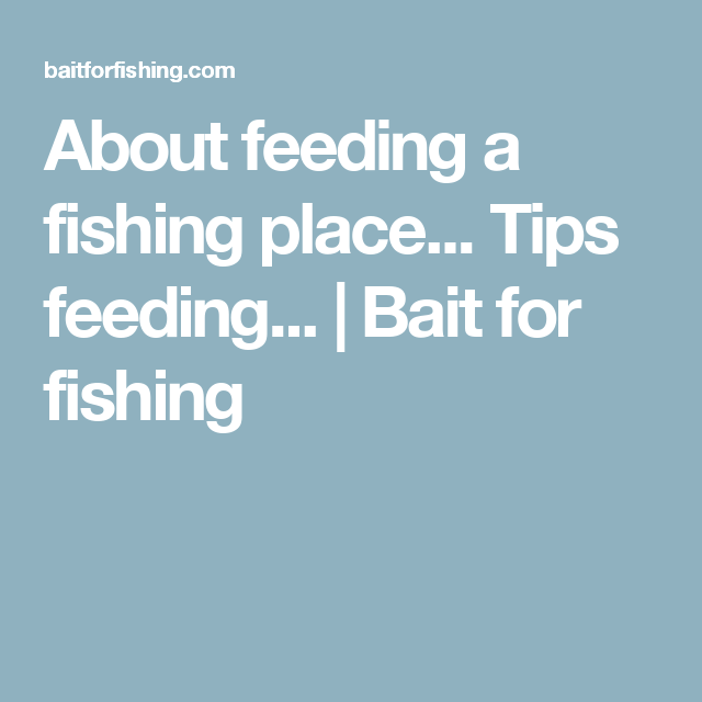 About feeding a fishing place... Tips feeding... | Bait for fishing