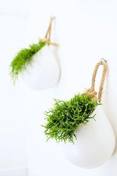 DIY: hanging baskets // hangplanten
