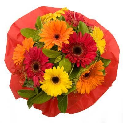 Aster September Birth Flower Flower Delivery Online Flower Delivery Flower Bouquet Delivery