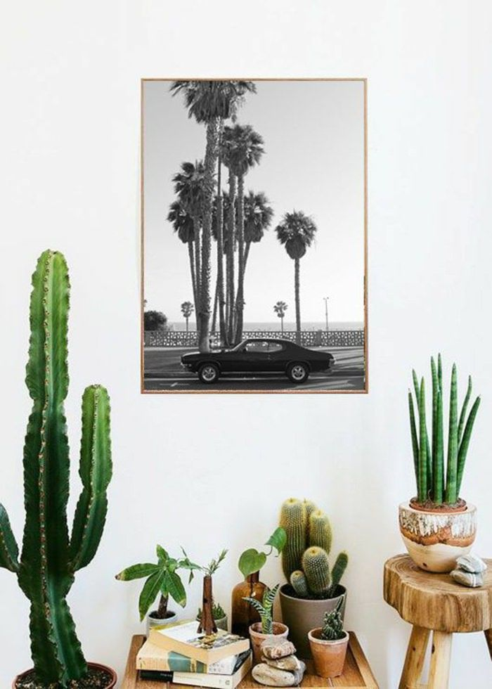 Des plantes des cactus une affiche vintage voil un coin d co qui sent bon la californie - Trend deco huis ...