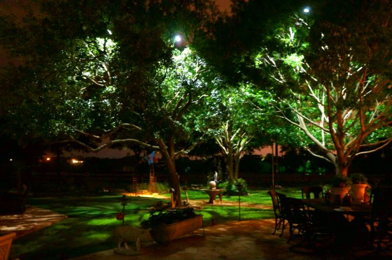 Moonlighting Tree Lighting Landscape Design