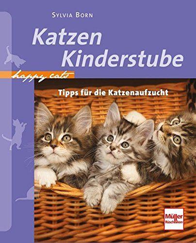 Katzenkinderstube Tipps für die Katzenaufzucht (Happy