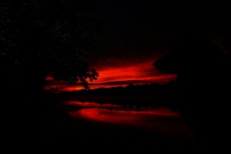 -Deutscher Schäferhund Sunrise von Kristin Castenschiold auf 500px   - sunsets and sunrises -Schä