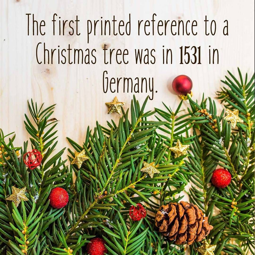 Did You Know Christmas Christmasfacts Facts Funfacts Didyouknow Christmastree Aurovilledotcom Personalized Engraved Gifts Hand Dyed Yarn Etsy Items