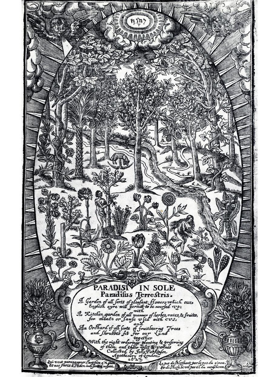 John parkinson paradisi in sole paradisus terrestris