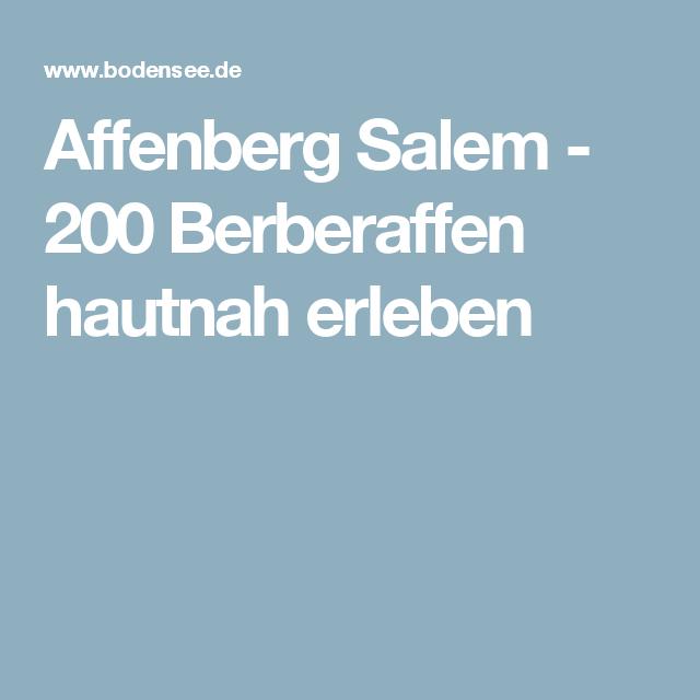 Affenberg Salem -  200 Berberaffen hautnah erleben
