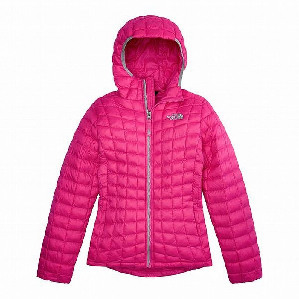 Ebay Sponsored The North Face New Pink Girl S Size 10 12 Puffer Jacket Outerwear 45 793 North Face Girls Outerwear Jackets Size Girls [ 1000 x 1000 Pixel ]