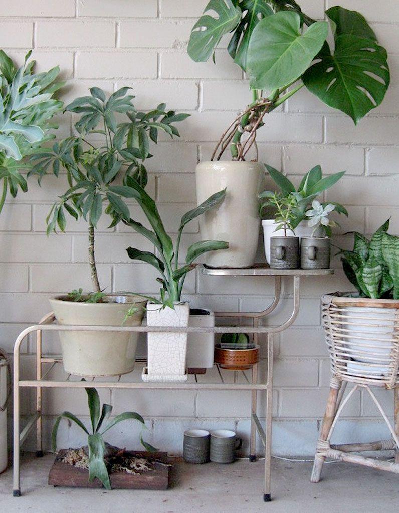 15 id es pour mettre son balcon au vert d co jardins - Refuge d hiver meuble et decoration ...