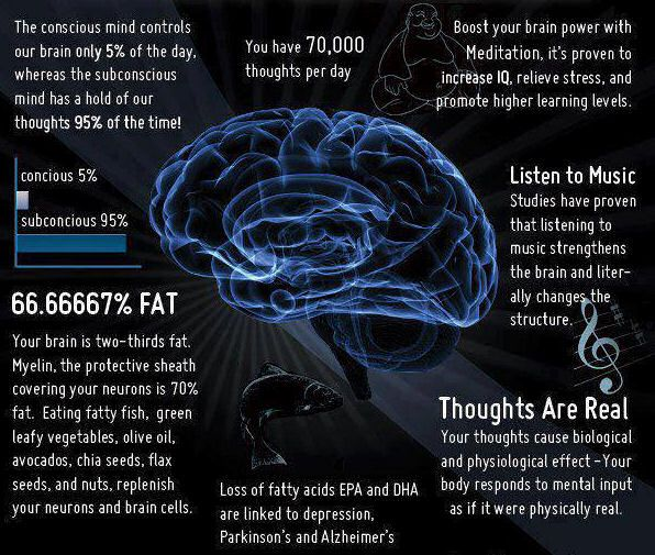 Our amazing brains