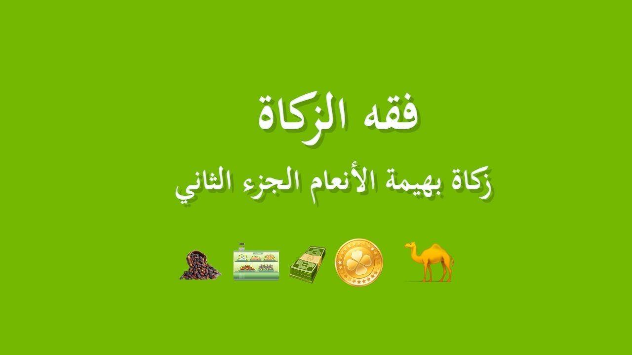 زكاة بهيمة الأنعام Ali Bin Abi Thalib At Taubah Pembina
