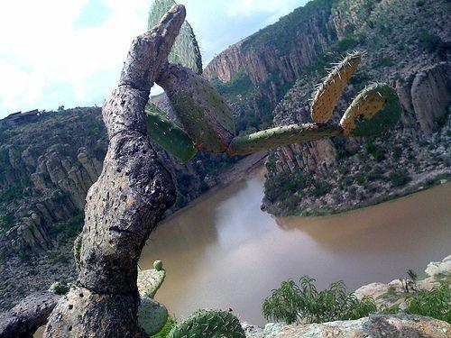 Turismo de aventura en aguascalientes lugares para for Lugares turisticos para visitar en espana