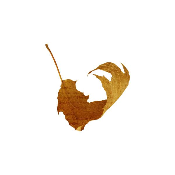Косметика tianDe на Яндекс.Фотках ❤ liked on Polyvore featuring leaves, autumn, fall and y.autumn