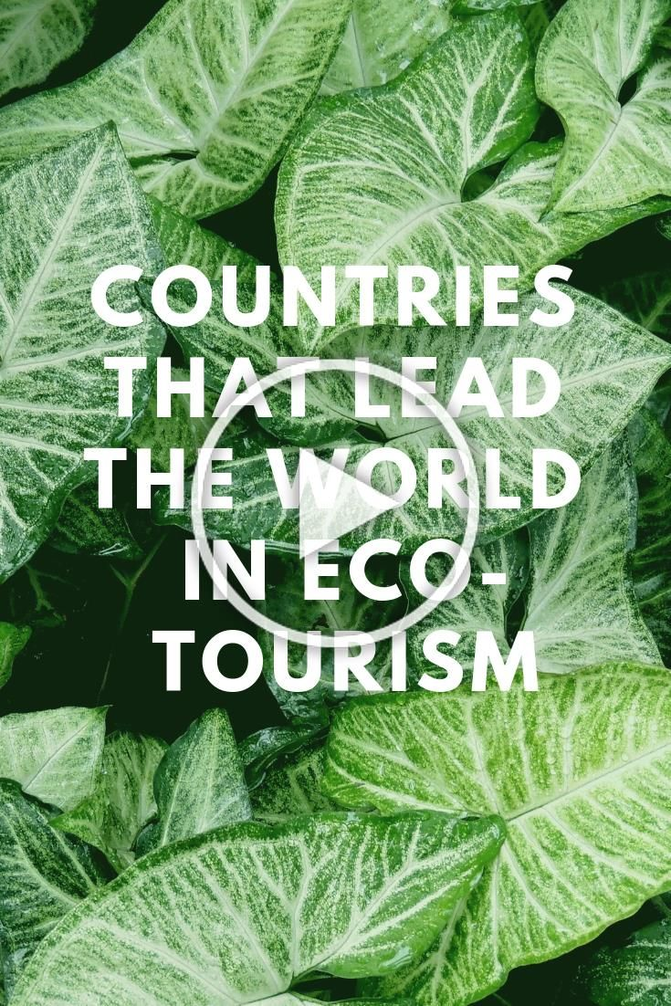 Here are seven nations that are leading the world in eco-tourism.