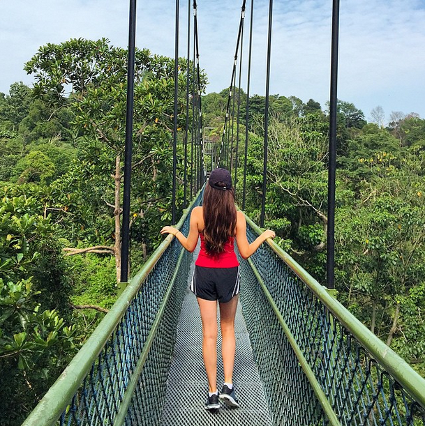 Where To Go In Singapore For Nature Lovers World Of Wanderlust World Of Wanderlust Where To Go Nature Lover