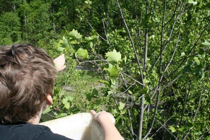 Storytimes at Brookside Nature Center: Swimming Critters Silver Spring, MD #Kids #Events