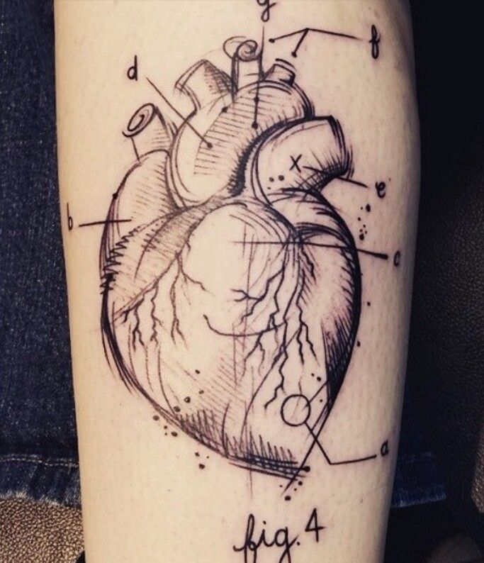 Greys Anatomy Heart Diagram Tattoo