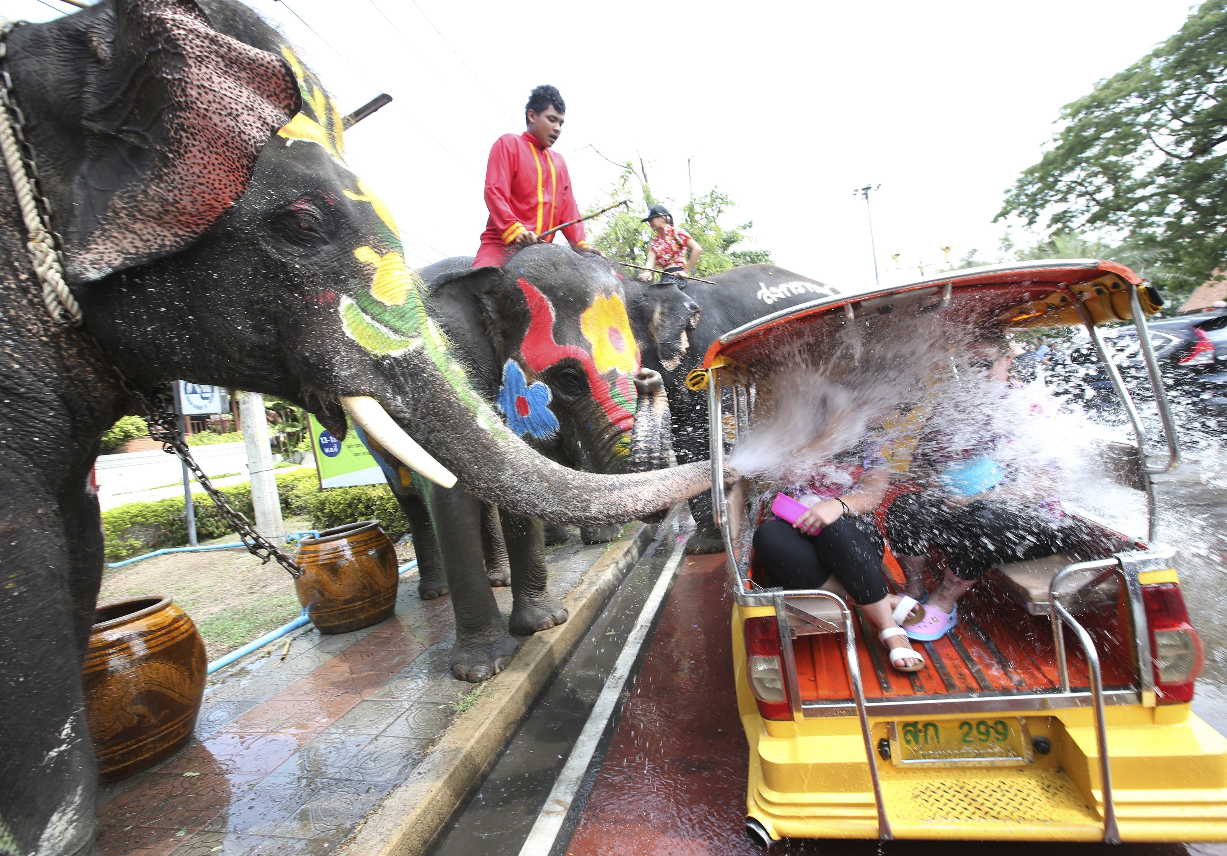 Ayutthaya, Tailandia. Tourists on a tuktuk are sprayed with water by elephants during a preview of the Songkran festival, also known as the water festival, at the world heritage park.