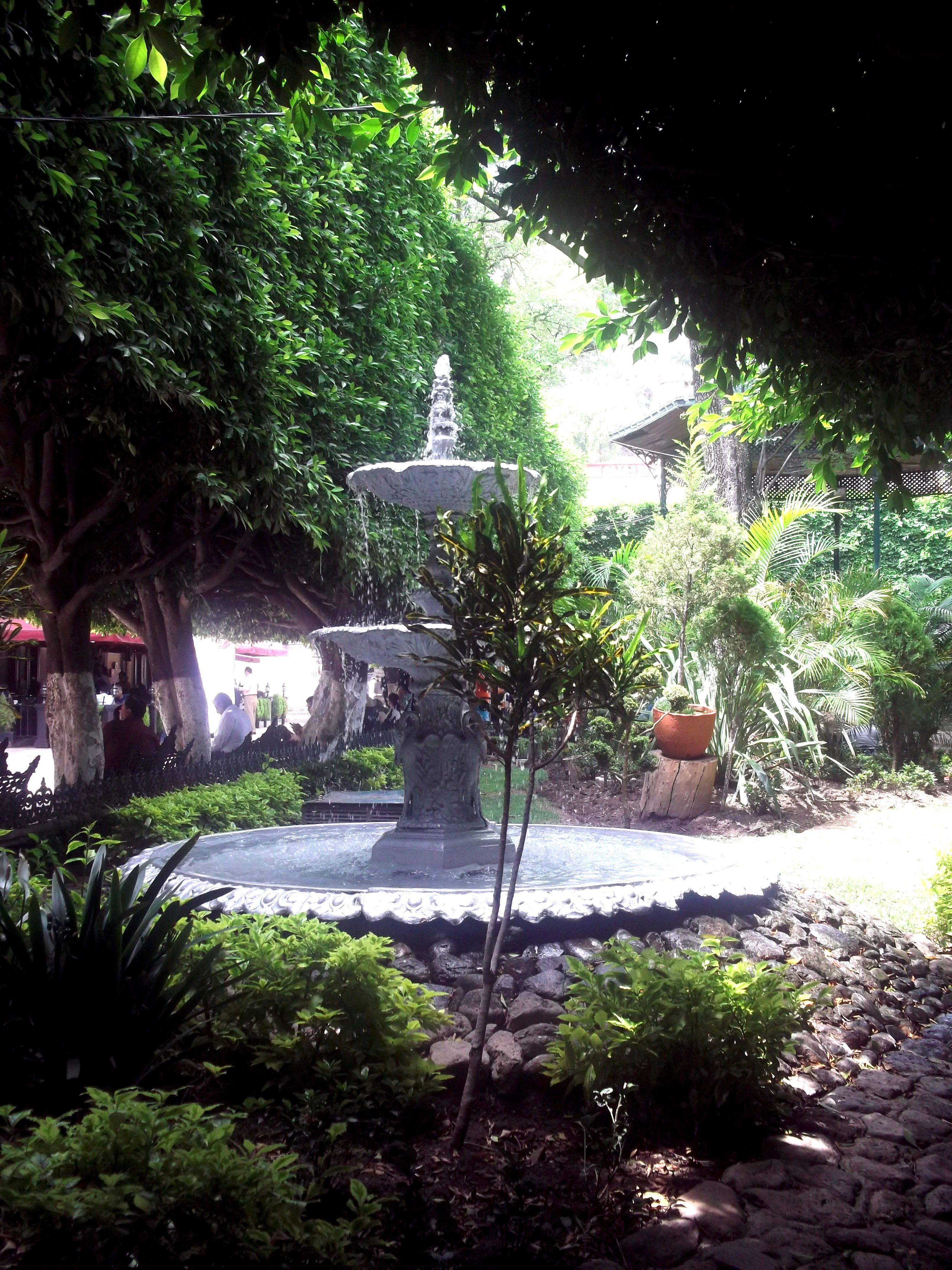 Jardín de Unión #Guanajuato