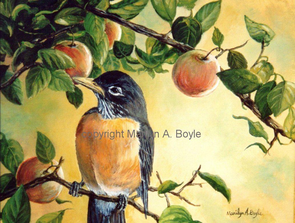 PRINT-ROBIN in APPLE Tree; backyard bird, wall art, 8 x 10 inches ...