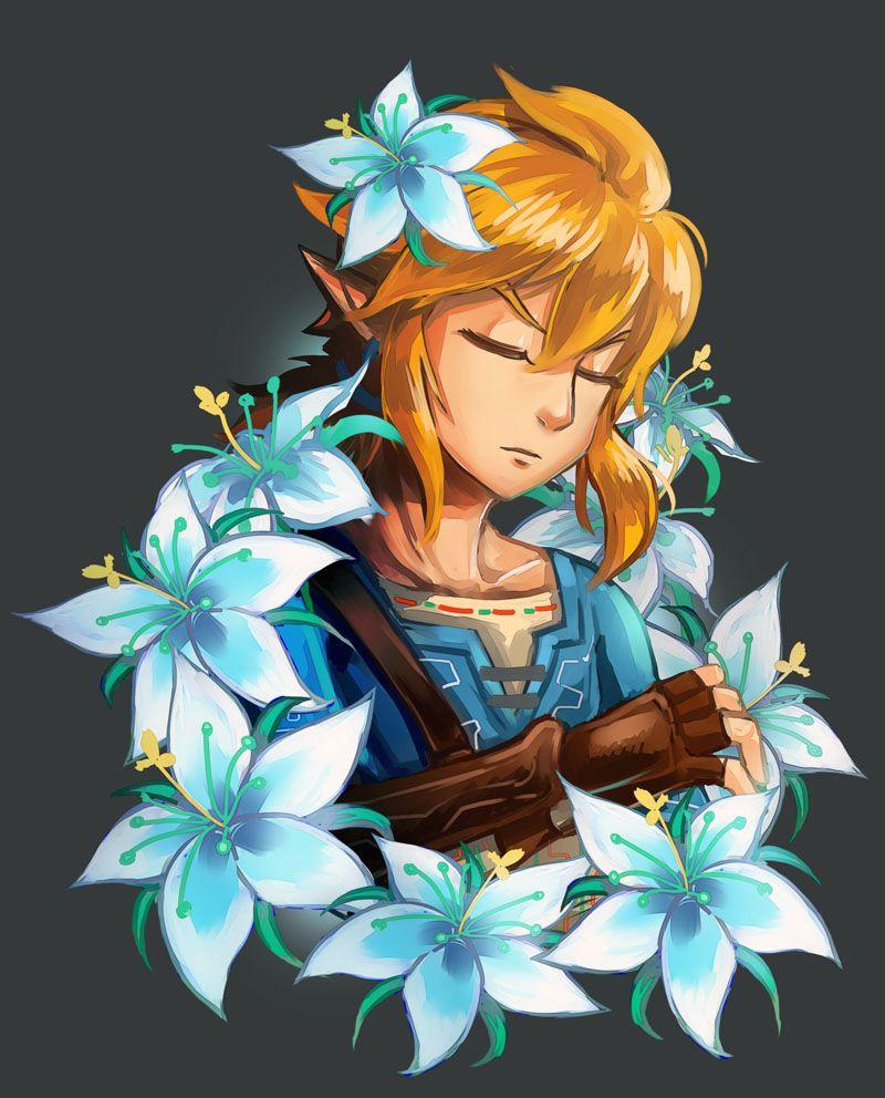 Magnifique image de link dans les fleurs bleu zelda - Link dans zelda ...