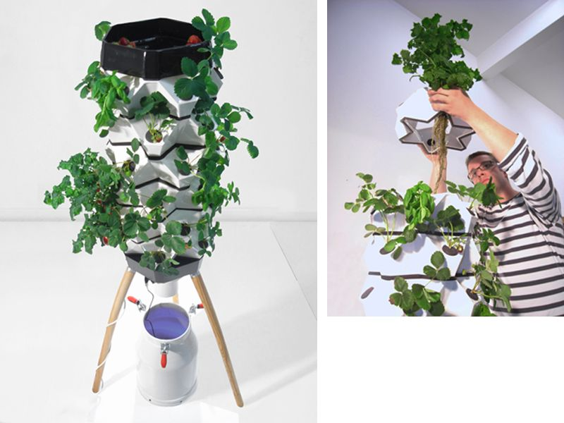 Here's a novel vertical tower garden idea from Vakant Design. Plants are fed via a nutrient mist produced by an ultrasonic head. Site is in English and German.