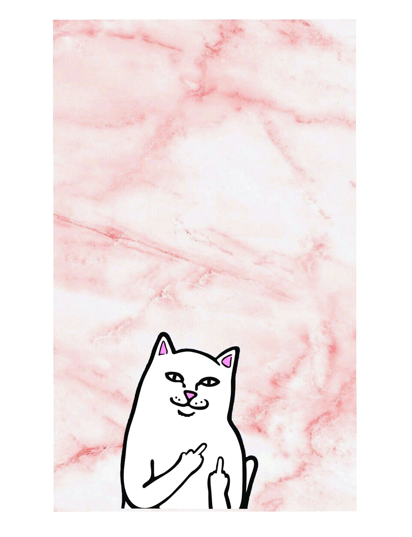 Pink marble background with ripndip cat wallpaper