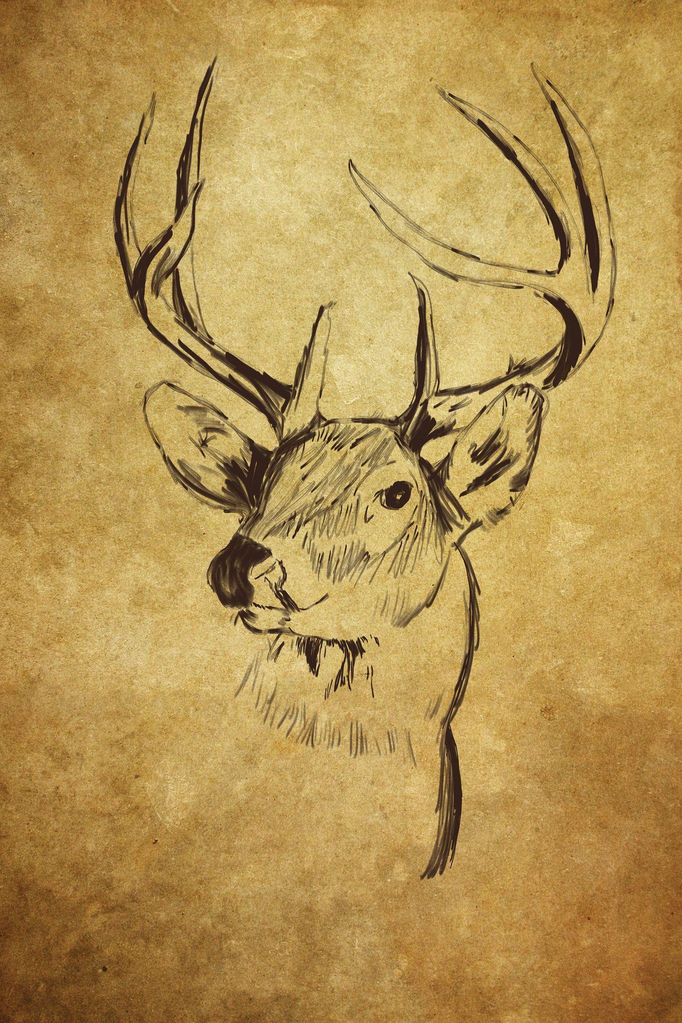 https://flic.kr/p/gtG4t7   Sketched Deer Head   A buck deer head ...