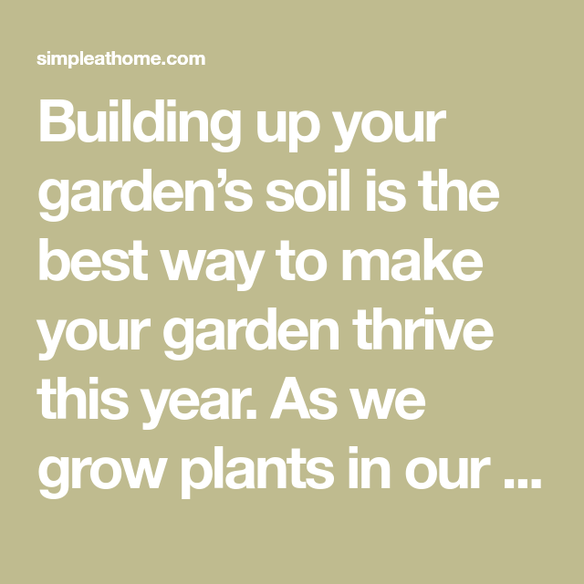 Creating Our First Vegetable Garden Advice Please: How To Build The Best Garden Soil