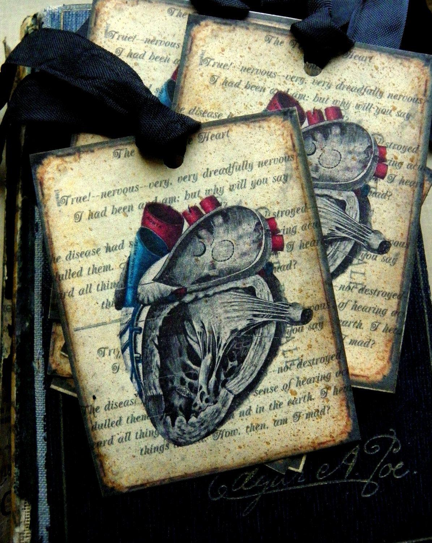 Anatomy Of A Heart Vintage Style Paper Tag Valentine | El corazon ...