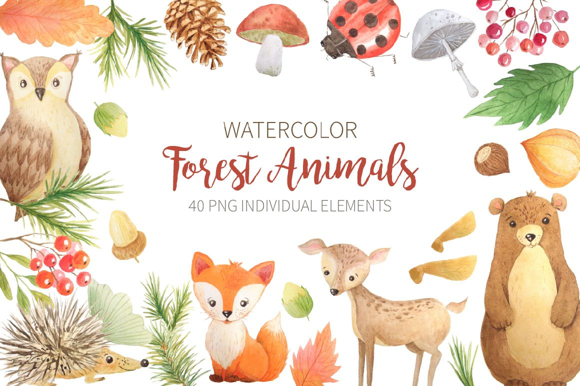 Watercolor Forest Animals by Font Bundles Store available