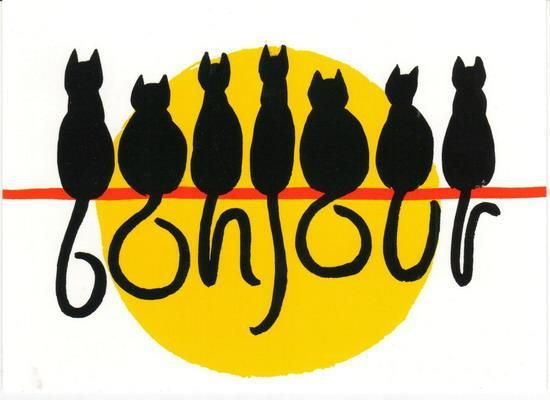 Bom Dia Cat: Chat, Bonjour E Dessin Chat