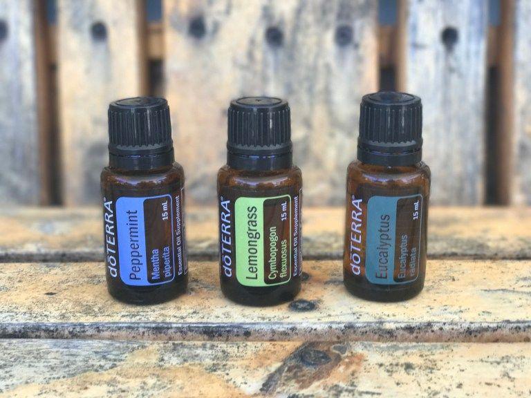 Diy tick repellent spray using essential oils tick