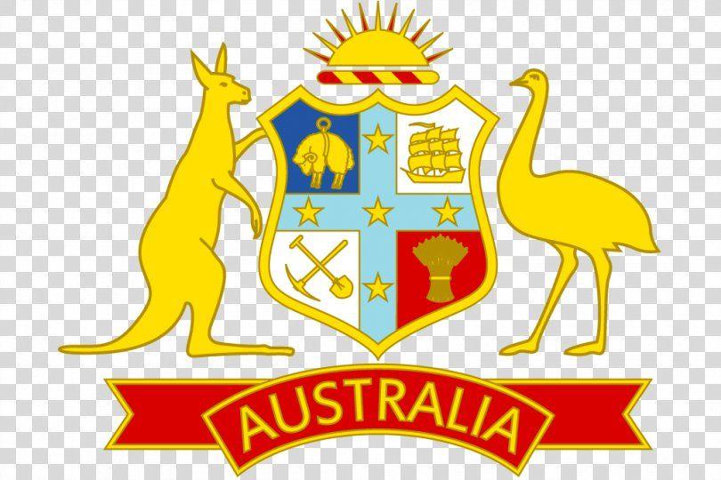 Australia National Cricket Team South Africa National Cricket Team Australia National Football In 2020 Rugby Union Teams National Football Teams Australia Cricket Team
