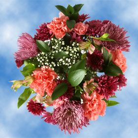 Mothers Day Flowers Free Delivery Lavender Spider Mums