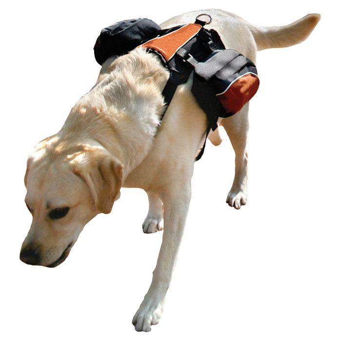 Otis Dog Backpack