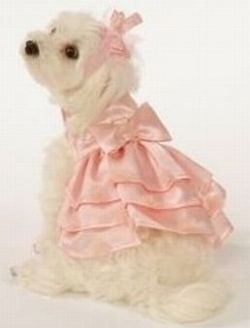 Dog Bridesmaid Dress - Ocodea.com