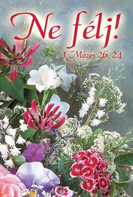 bibliai idézetek konfirmációra képes igeversek   Google keresés | Floral wreath, Floral, Animals