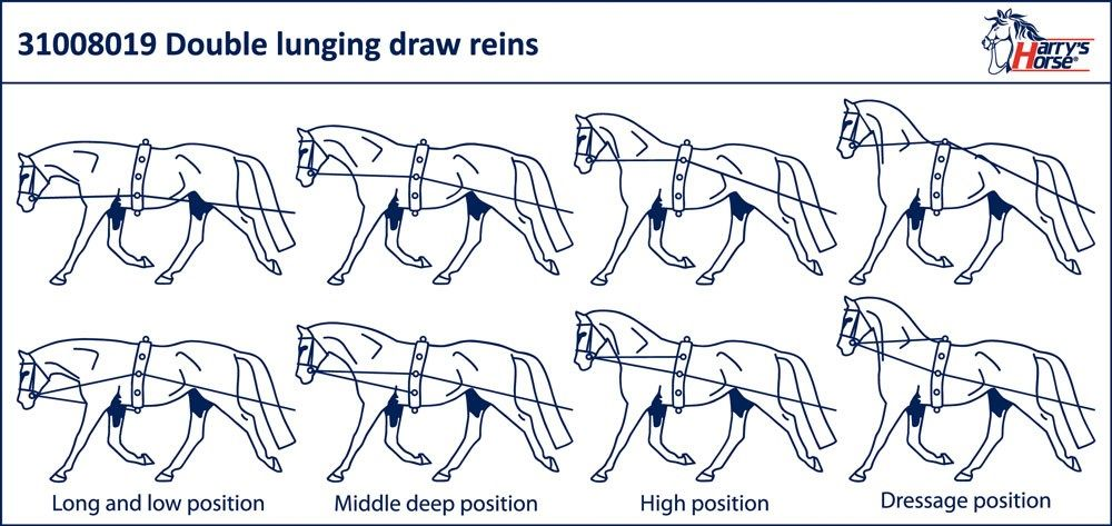 Black Horze Double Lunging Reins