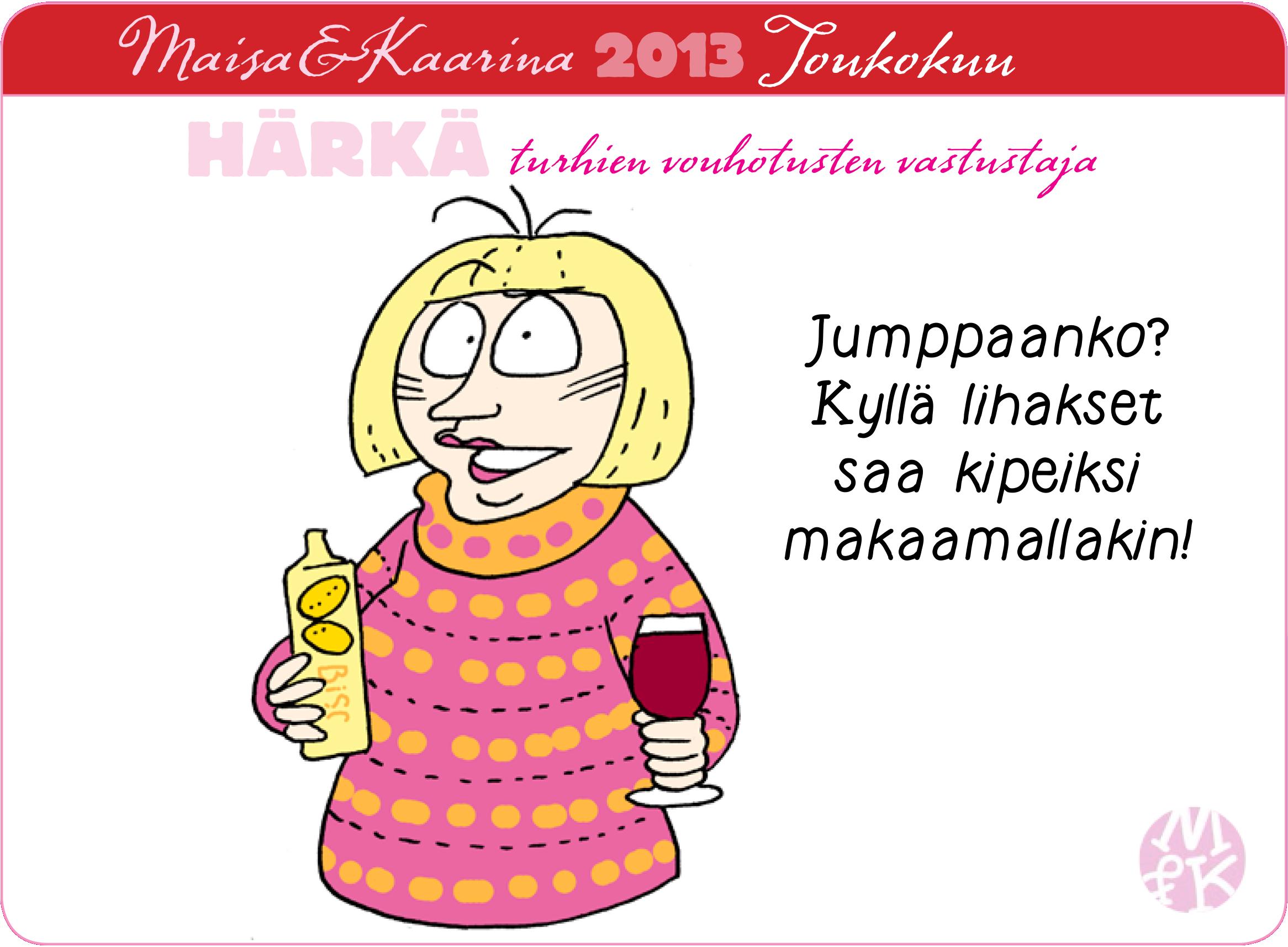 MK2013toukokortti