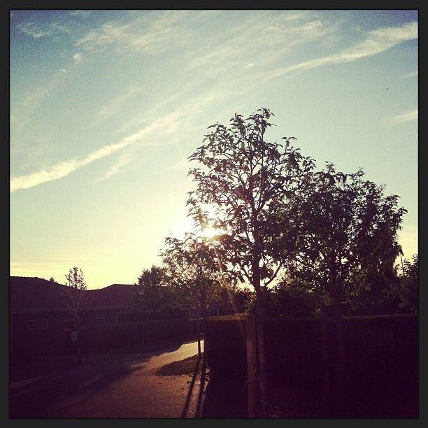 .@mulle1981 | Blå himmel over skønne Danmark #denmark #love #bluesky #summertime #julyphotochallengefpoe