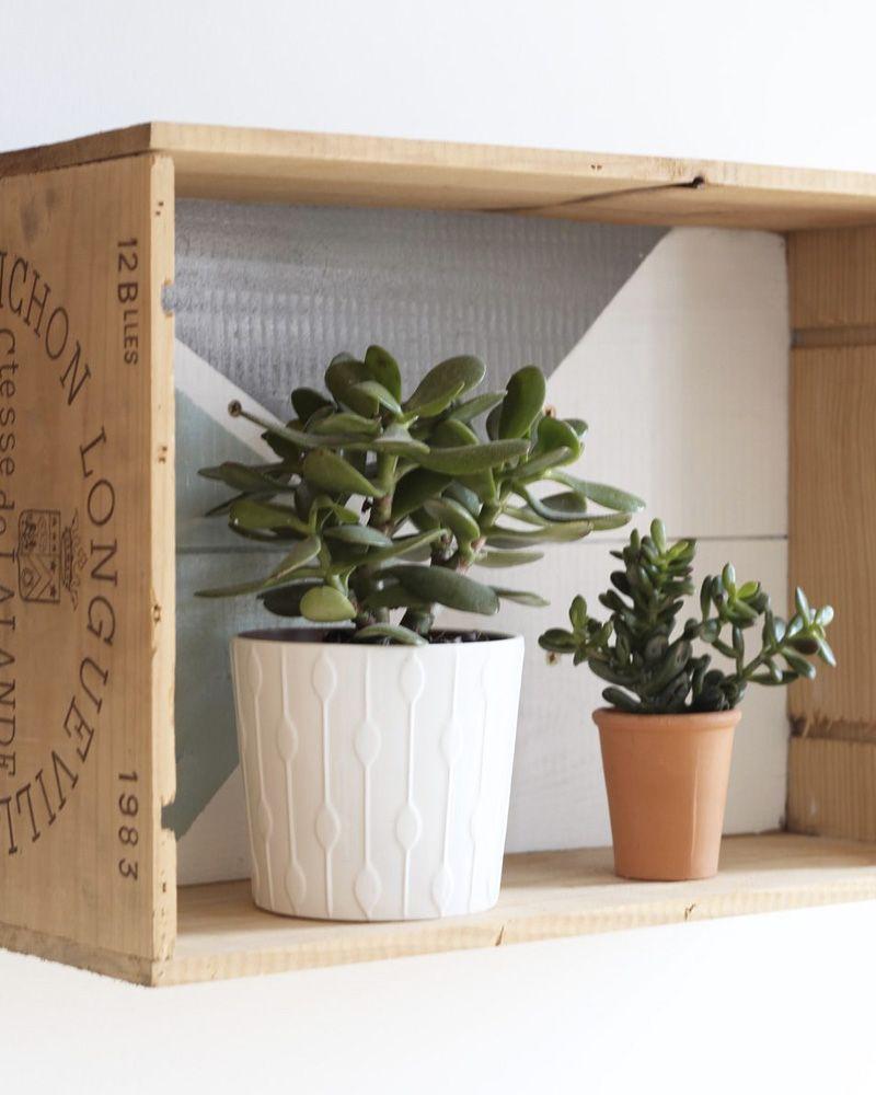 Planter Dans Une Caisse En Bois 10 idées diy avec des caisses en bois | home deco, green