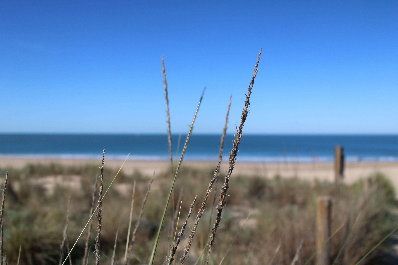paisajes de la playa de las redes en El Puerto de Santa María