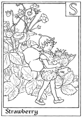 Marvelous FAIRY COLORING PAGES S Is For Strawberry   Flower Fairies