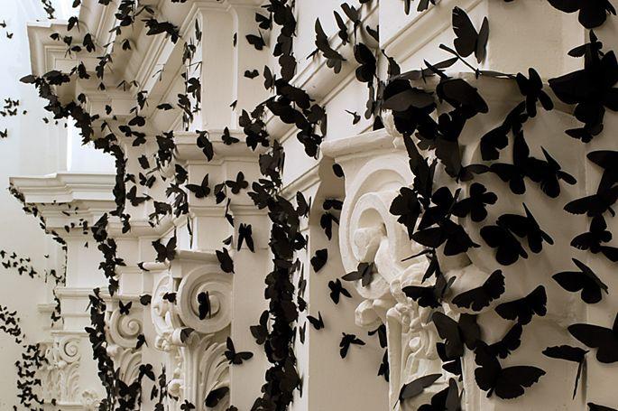 butterflies via Anna Norriss