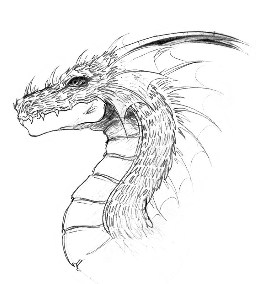 Cool dragon head drawings in pencil for Cool drawings to draw in pencil