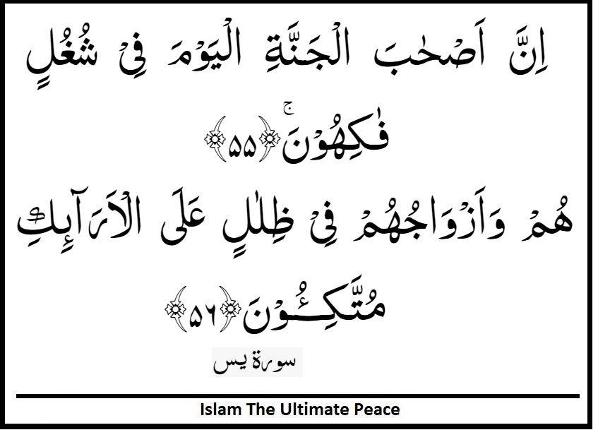 Surah Yasin Surat Yaseen Verses 55 56 Islamic