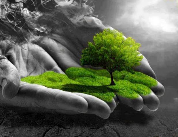 Natural Beauty Of Kashmir Wallpaper Google Search Hope Wallpaper Photo Garden Sculpture