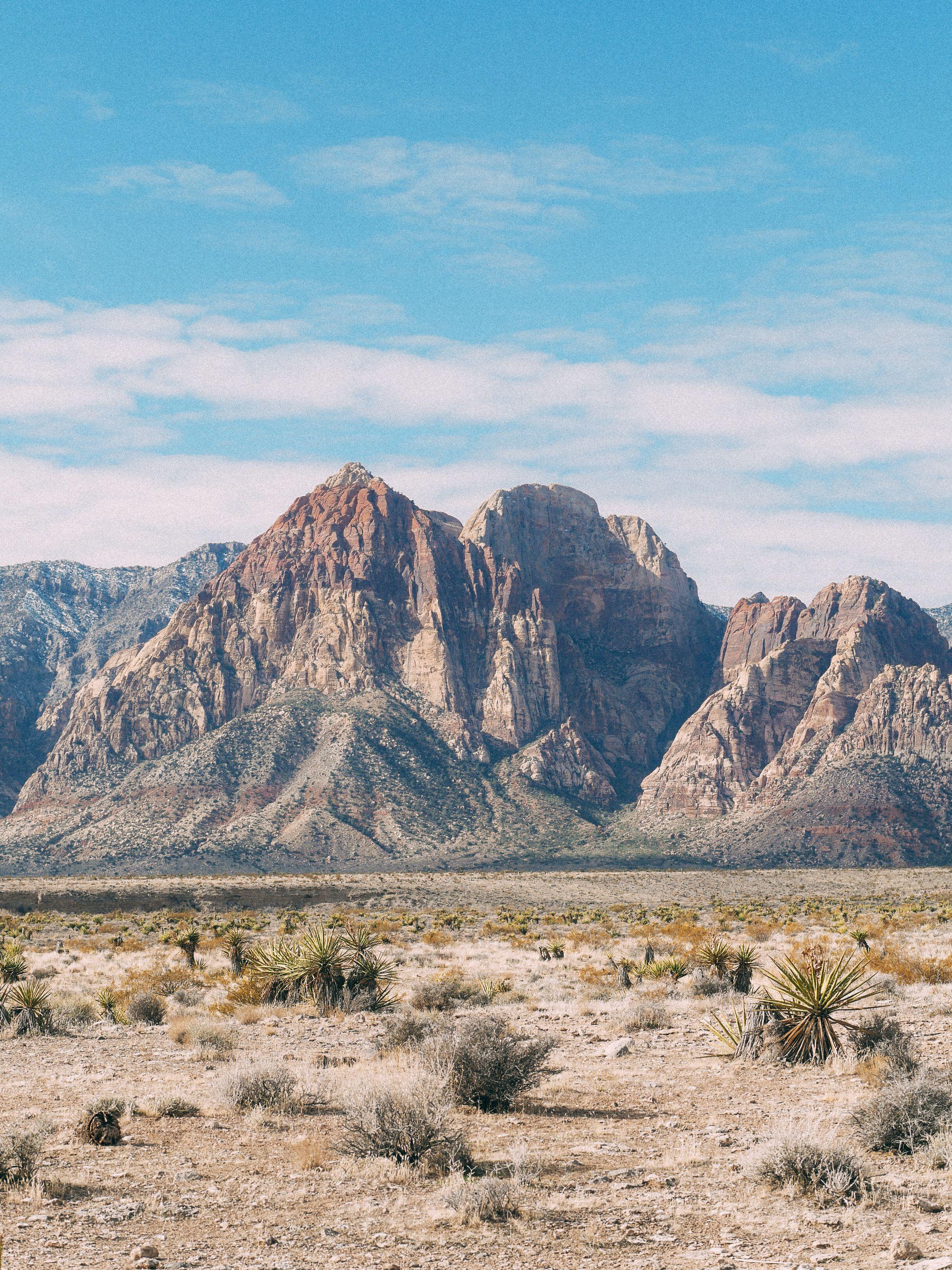 Red Rock Canyon in 2020 Las vegas trip, Las vegas, Most