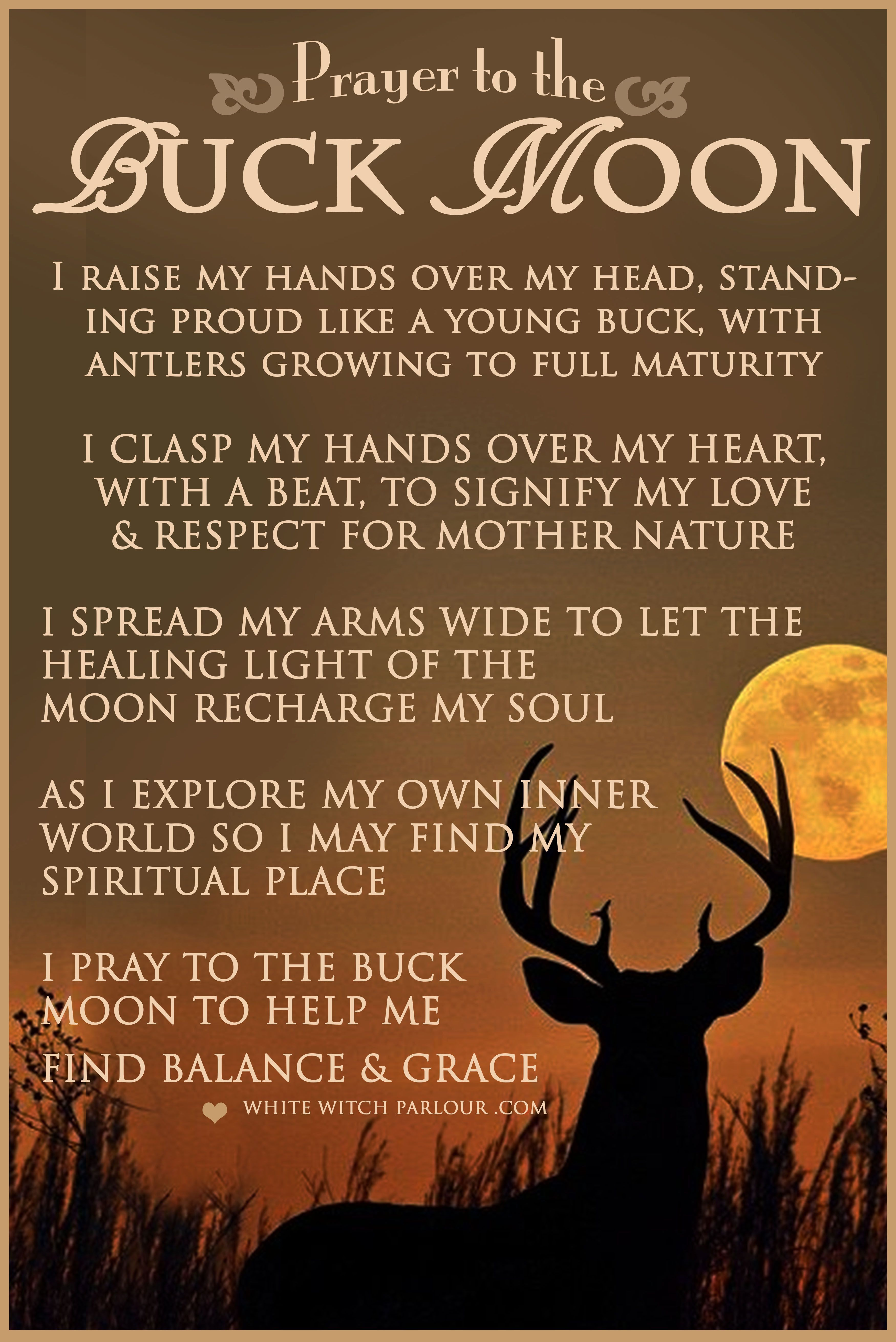 Full Moon Summer Buck Moon July Witch Metaphysical Wicca Spells Release Prayer Blessing Enchanted Spir Full Moon Spells Full Moon Buck Moon Meaning